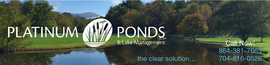 Pond Management | Greenville SC | Charlotte NC