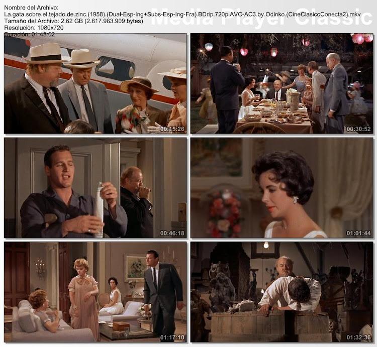 Imágenes de la película: La Gata Sobre el Tejado de Zinc | 1958 | Cat on a Hot Tin Roof
