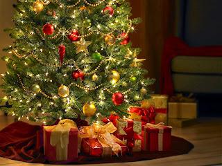 Curiosidades sobre los Árboles de Navidad