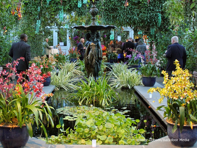 NGLCCNY News Blog: March 2015 M3 Mixer at NY Botanical Gardens