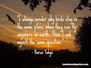 harun yahya quote