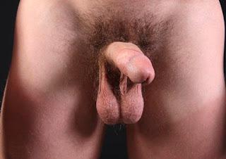 热裸女 - sexygirl-0001-761821.jpg