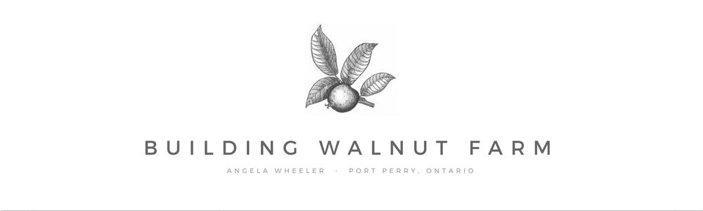 Building Walnut Farm