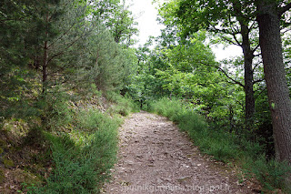 Дорога 3 Замков - Рибовилле