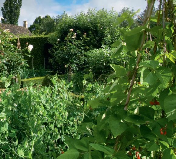 English Garden Ideas Designs Photograph English garden des