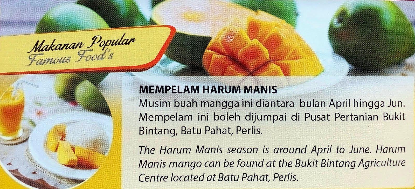 Perlis Mango Plantation