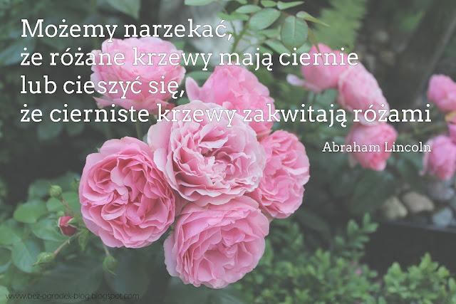 cytaty i sentencje  o kwiatach i ogrodach