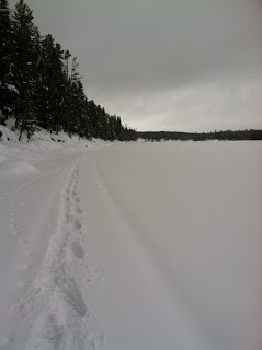 Snowshoe tracks along the river