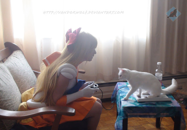 Sailor Venus: Someplace to Be por VandorWolf