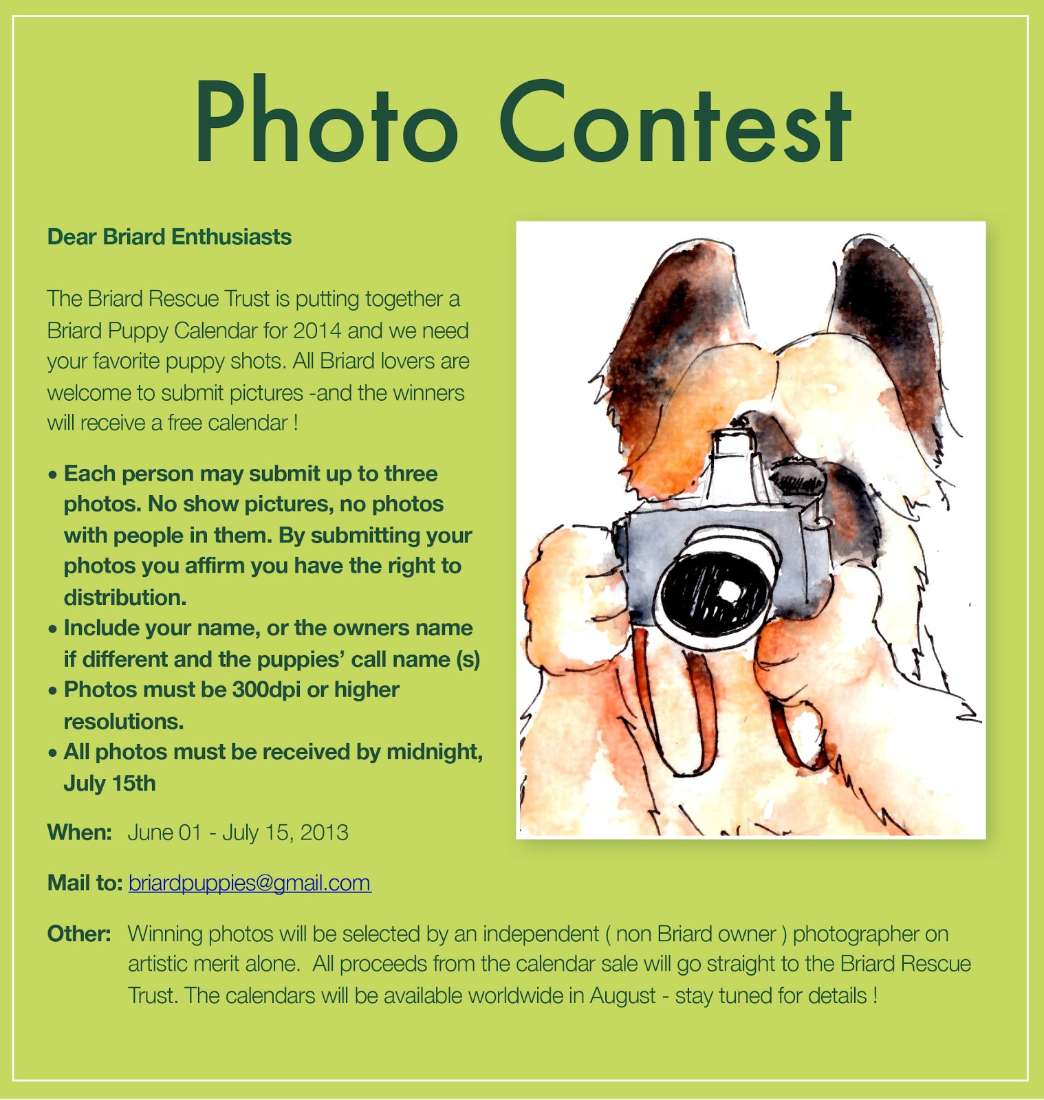 Calendar Photography Contest : Pacific northwest briard club rescue trust
