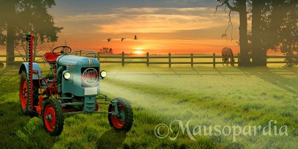 http://www.fineartprint.de/bilder/landleben-mit-traktor,11226790.html