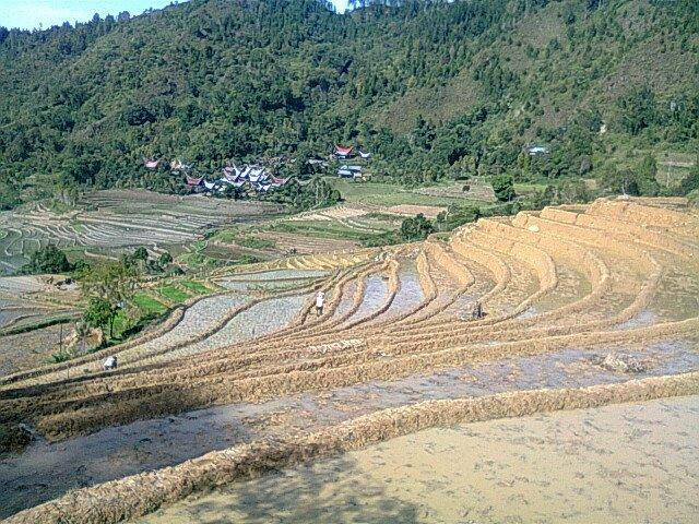 Toraja Indah