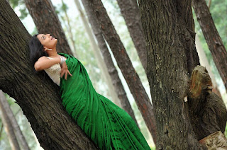Actress-Nikitha-Narayan-high-resolution-Hot-Saree-Wallpaper-Photos_actressphotosgalleryhub.com_04.jpg