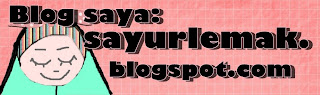 sayurlemak.blogspot.com