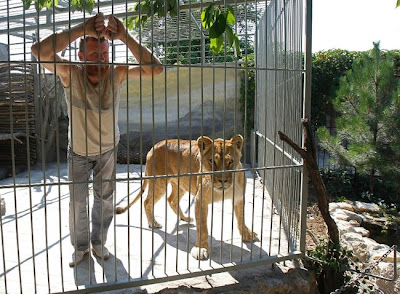 [Image: living_with_lions_01.jpg]