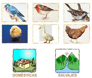 http://primerodecarlos.com/SEGUNDO_PRIMARIA/noviembre/Unidad_4/actividades/cono_unidad4/aves_corral_silvestres.swf
