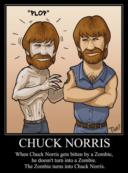 2558195-one-and-only-chuck-norris16.jpg