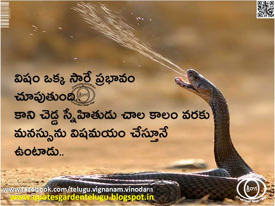 Best Telugu Friendship Quotes with Beautiful wallpapers