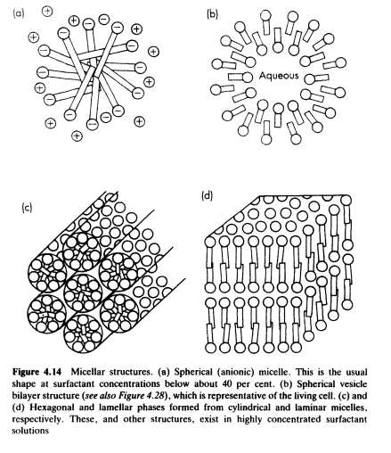 Structures of Micelle