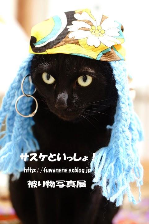http://fuwanene.exblog.jp/