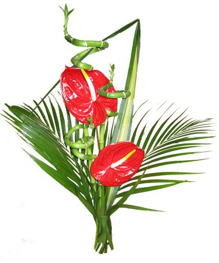 Love fleurs exotiques photos - Idee bouquet de fleur ...
