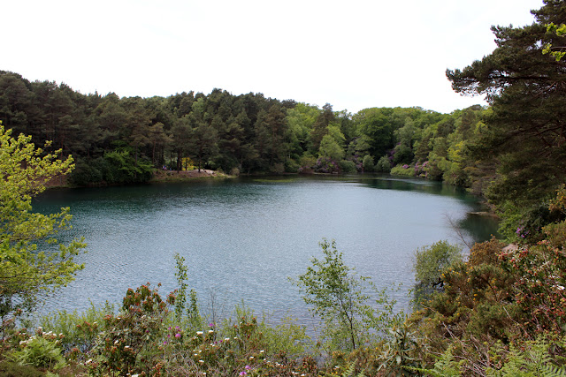 blue-lake, blue-pool, todaymyway.com, spring-at-the-lake