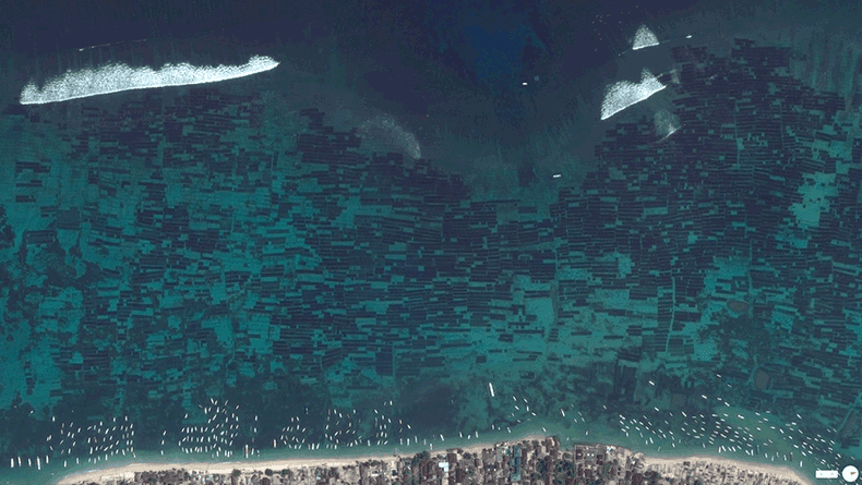 Foto mozzafiato: Indonesia: Nusa Lembongan - Fattorie Sottomarine