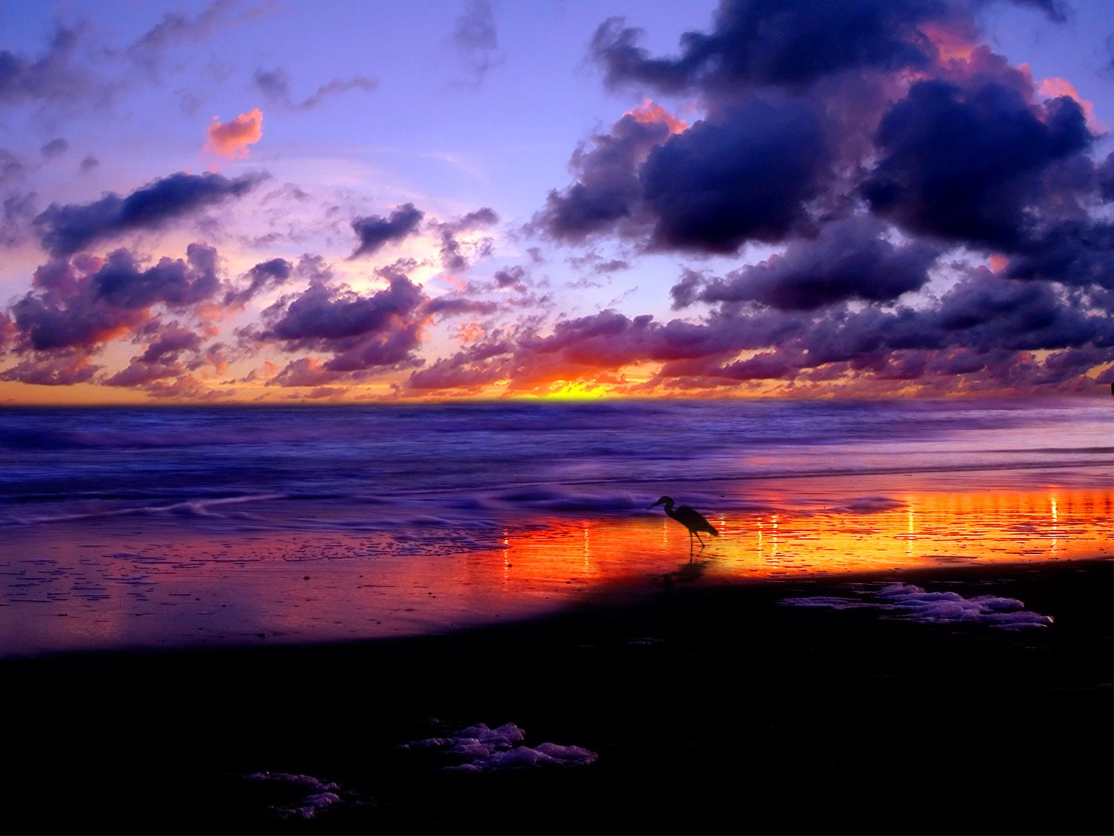 http://2.bp.blogspot.com/-yDVUUPie-lk/TkYneUYZEvI/AAAAAAAADB8/MqW9dTY035E/s1600/nature_003_1600x.jpg