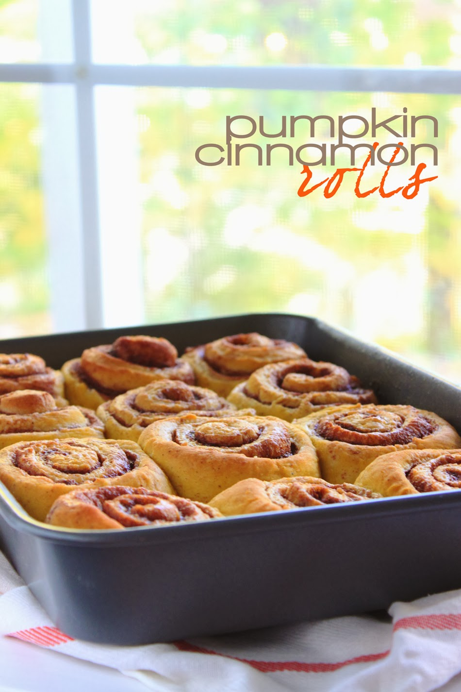 The Busty Baker: Pumpkin Cinnamon Rolls with Maple Icing