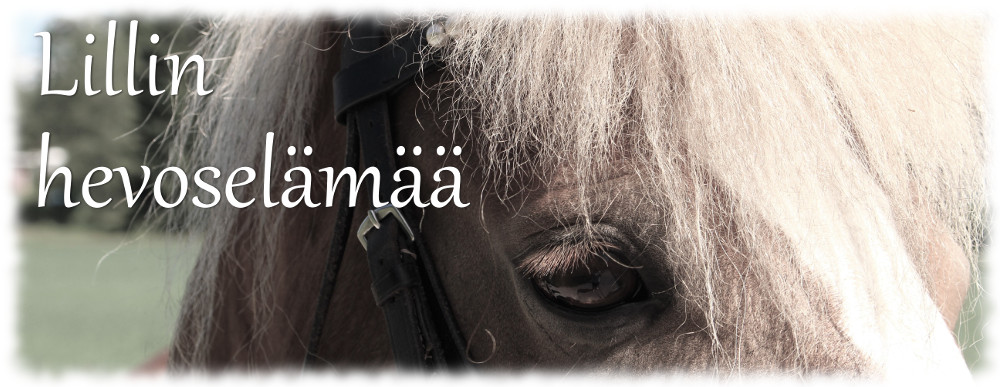 Lillin hevoselämää