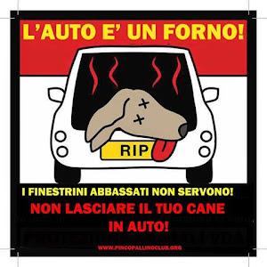 NON LASCIARLO IN AUTO!