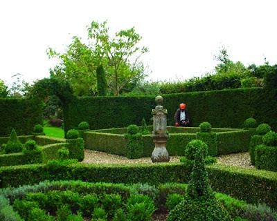 Arte y jardiner a arte topiario jardiner a ornamental for Variedades de pinos para jardin
