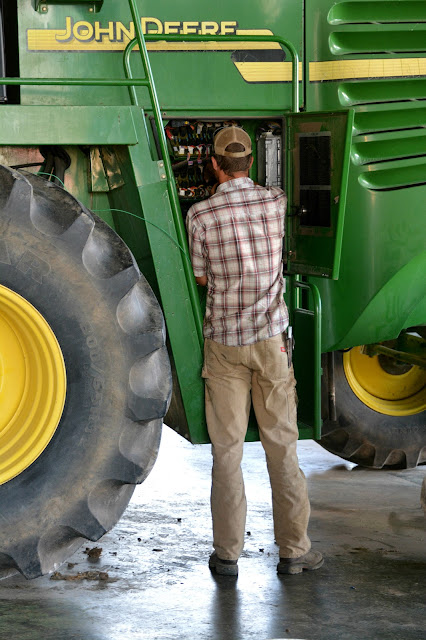 Austin Corporate governance case studies cpa australia Meadow has