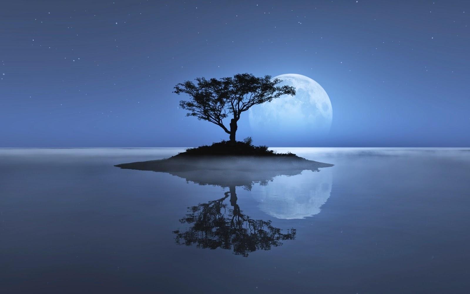 L 39 enkanteri mayo 2014 for En que fase de luna estamos hoy