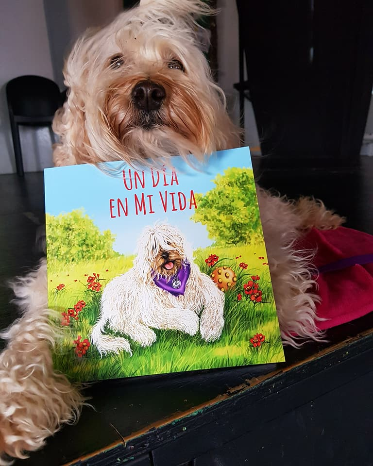 Libro: Un dia en mi vida