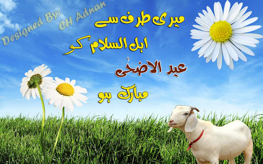 bakra eid wallpaper 2017 download, bakra eid wallpaper 2017, bakra eid wallpaper 2017, bakra eid wallpaper 2017, wallpapers of bakra eid mubarak, bakra eid video, bakra eid qurbani, bakra eid 2014,  eid mubarak wallpapers 2017 download, eid mubarak wallpapers in hd, eid mubarak wallpapers 2017, eid mubarak wallpapers 2017, eid mubarak wallpapers 2017, eid mubarak wallpapers for mobile