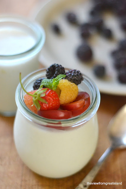 healthy and light panna cotta