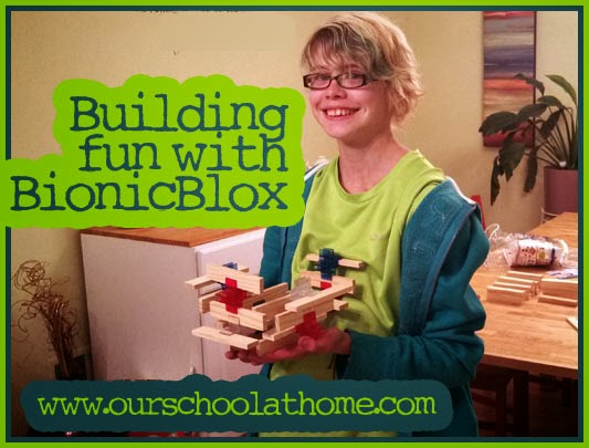 BionicBlox natural wood building blocks