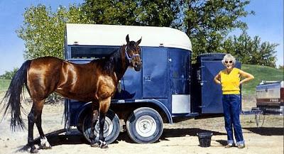 oleos-de-caballos-realistas