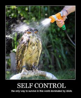 eule selbskontrolle gegen idioten dieser welt. owl self control idiots this world.