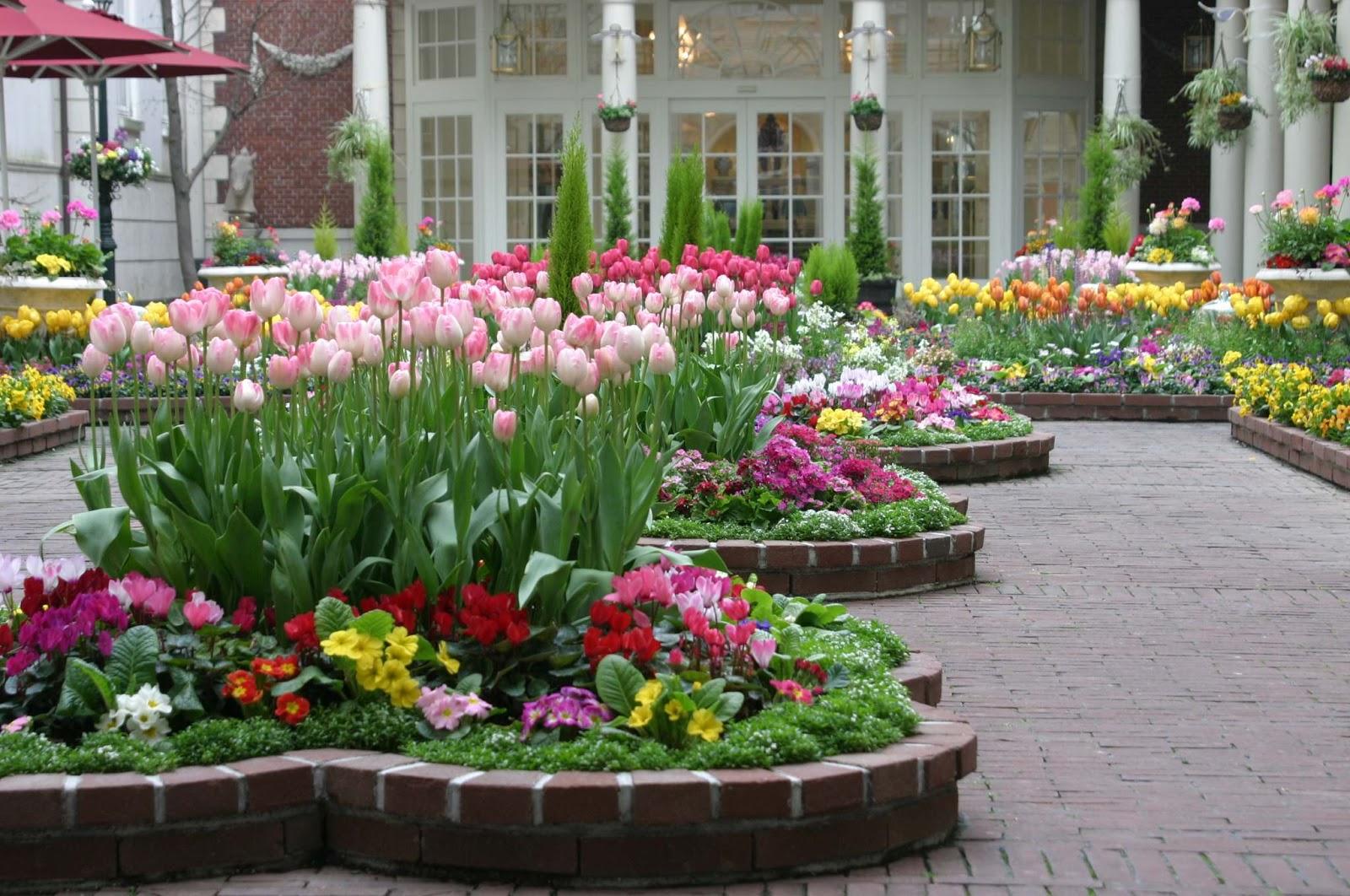 Arte y jardiner a arriates ornamentales en el jard n for Ornamental definicion
