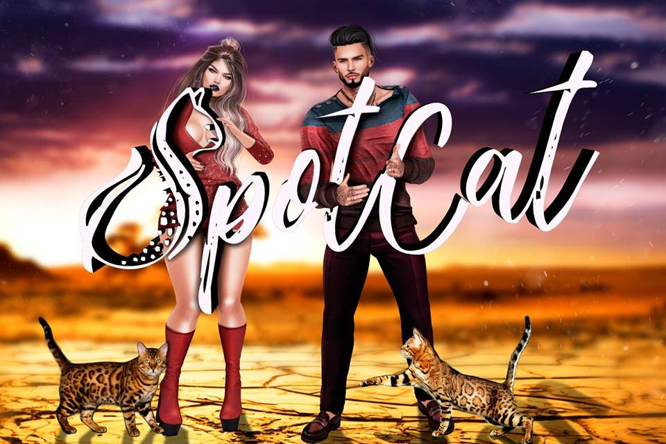 SpotCat