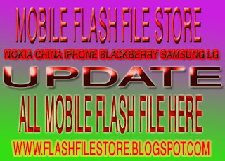 mobile flash file store