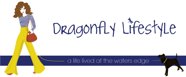 Dragonfly Lifestyle