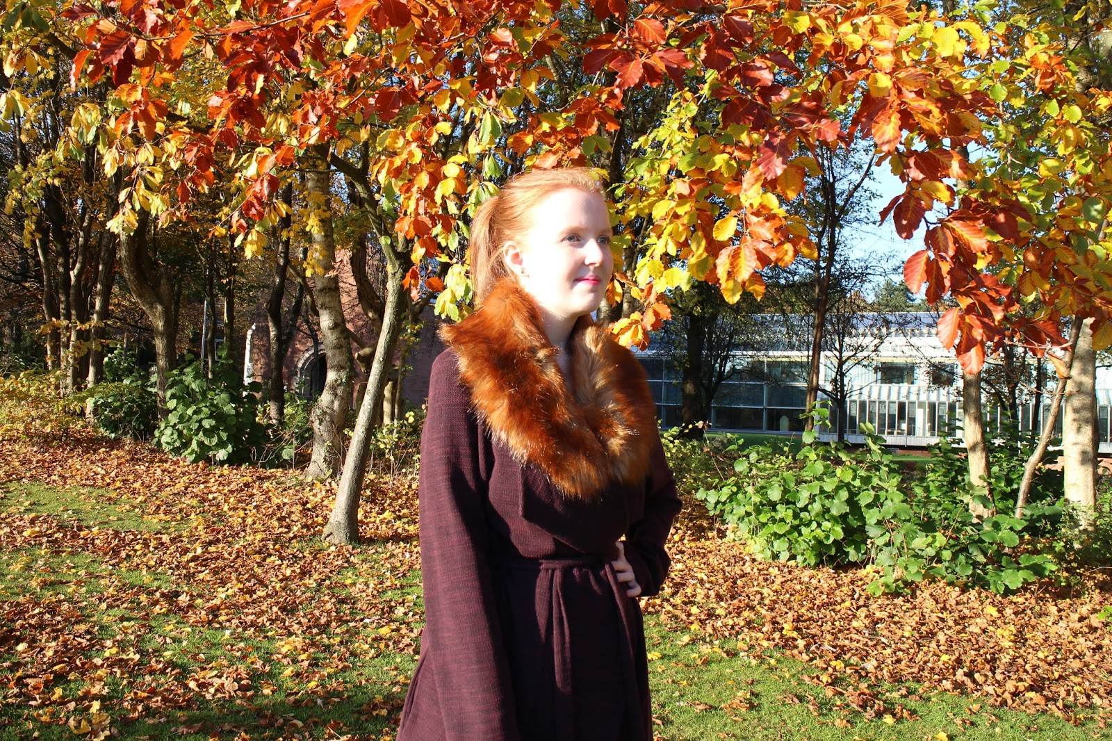 New Look Winter Coat Blogger