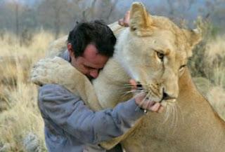 Amor aos animais