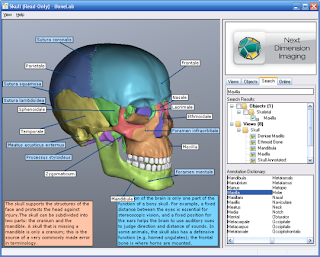 BoneLab 2 v2.3.36 Full Version with Patch