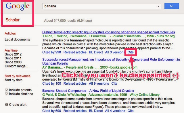 Google Scholar Cite Link