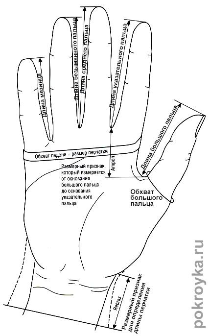Выкройка перчаток. Как самостоятельно пошить перчатки