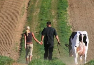 smešna slika: Čovek sa kravom drži ruku žene
